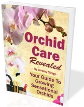 Orchid Care Revealed - Your Guide to Growing Sensational Orchids