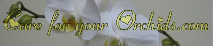 Care for your Orchids.com Logo